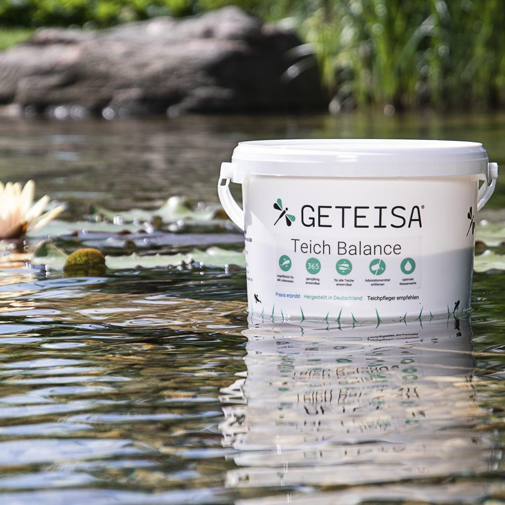 Algen Im Teich Zu Viel Sauerstoff