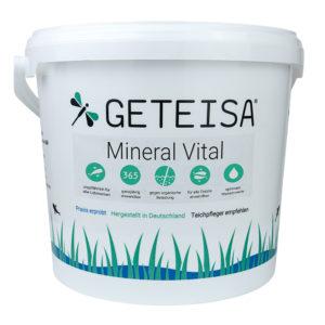 Mineral Vital (Montmorillonit)